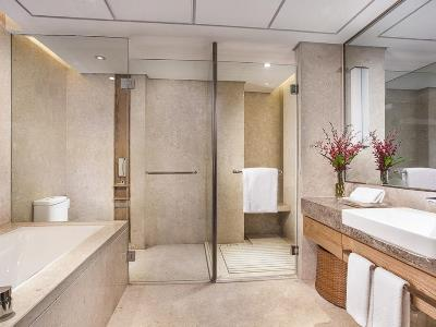 bathroom 1 - hotel holiday inn hefei - hefei, china