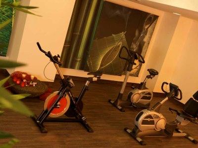 gym - hotel wyndham garden lahnstein koblenz - lahnstein, germany