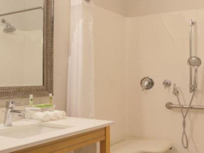 bathroom - hotel holiday inn exp n suites-university area - davis, united states of america