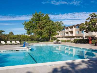 outdoor pool - hotel best western plus garden court inn - fremont, california, united states of america
