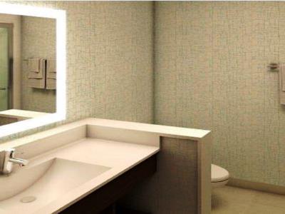 bathroom - hotel holiday inn express fullerton - anaheim - fullerton, united states of america