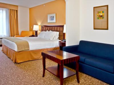bedroom - hotel holiday inn express brooksville i-75 - brooksville, united states of america