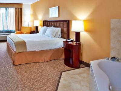 suite - hotel holiday inn express brooksville i-75 - brooksville, united states of america