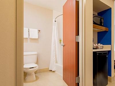 bathroom - hotel holiday inn express johnson city - johnson city, tennessee, united states of america
