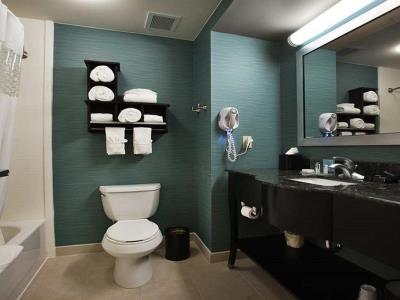 bathroom - hotel hampton inn new albany - new albany, mississippi, united states of america
