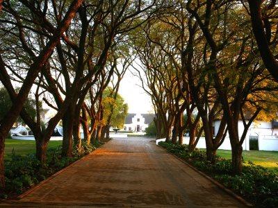 gardens - hotel kievits kroon - pretoria, south africa